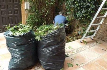 Roldán tiene nuevas disposiciones para restos verdes domiciliarios