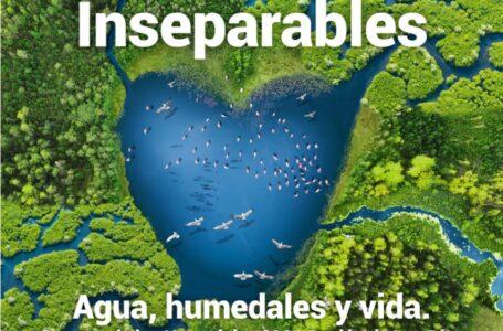 2 de febrero Día Mundial de los Humedales: valiosísimos ecosistemas desprotegidos y amenazados