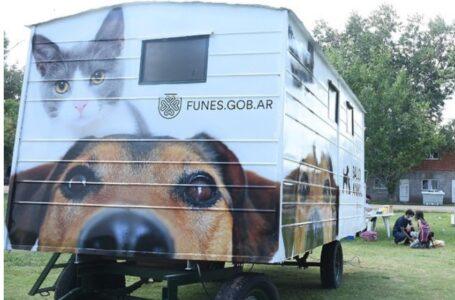 Nuevo Móvil Quirúrgico de Salud Animal en Funes