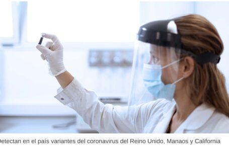 Coronavirus: detectaron en el país variantes del Reino Unido, Manaos y California