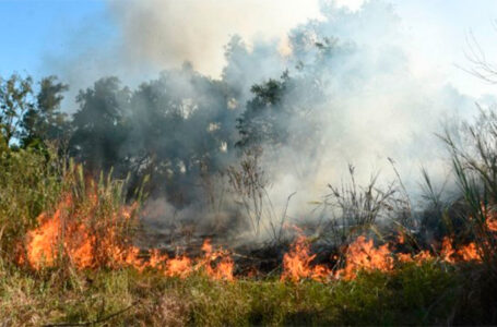 Presupuesto incendios: será siete veces más que lo ejecutado en el 2020