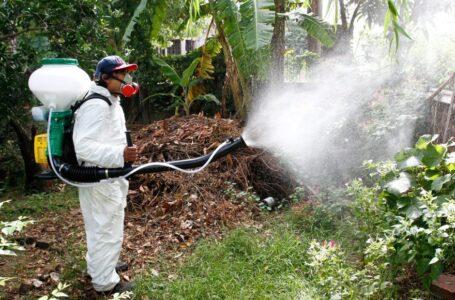 Continúa la Campaña de Fumigación en los barrios de Roldán