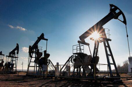 Petróleo: cayeron los precios