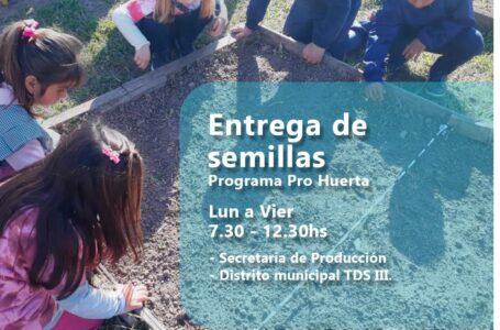Huerta: temporada primavera Verano: entrega de semillas en Roldán