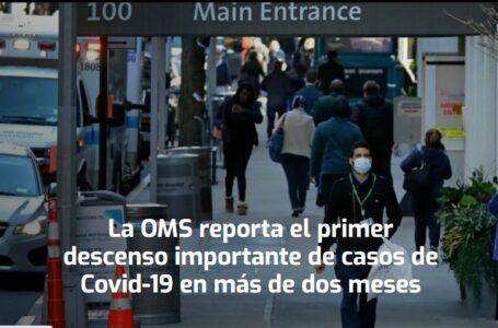 La OMS reporta el primer descenso importante de casos de Covid-19 en más de dos meses